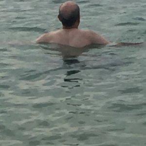 Gharieb (50)