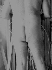 Teddybaer15
